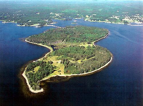 isola di oak